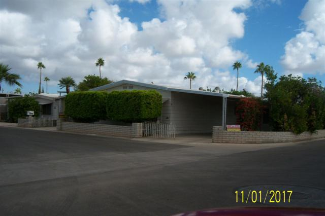 3691 S Senita Dr, Yuma, AZ 85364 (MLS #135939) :: Group 46:10 Yuma
