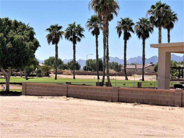 28521 Canal Ave, Wellton, AZ 85356 (MLS #136143) :: Group 46:10 Yuma