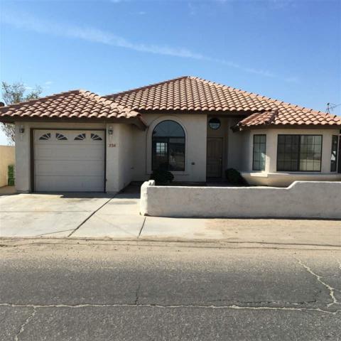734 S Mesa St, San Luis, AZ 85349 (MLS #136483) :: Group 46:10 Yuma