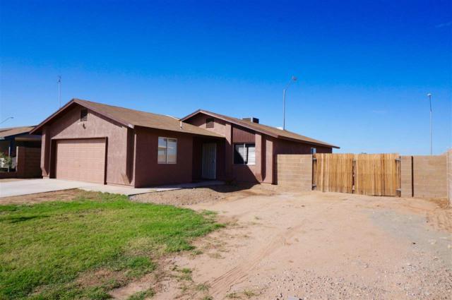 3876 S Hinckley Dr, Yuma, AZ 85365 (MLS #136523) :: Group 46:10 Yuma