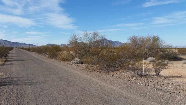0000 E Ave 56 E, Dateland, AZ 85333 (MLS #136664) :: Group 46:10 Yuma