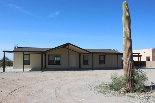 10440 S Ave 14 1/2 E, Yuma, AZ 85367 (MLS #137232) :: Group 46:10 Yuma