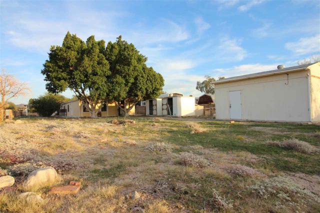 12416 S Renee Ave, Yuma, AZ 85367 (MLS #137236) :: Group 46:10 Yuma