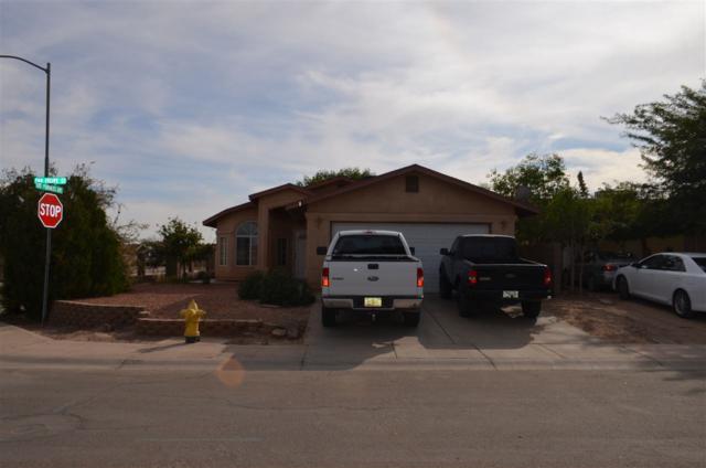 191 E San Felipe St, San Luis, AZ 85349 (MLS #137296) :: Group 46:10 Yuma