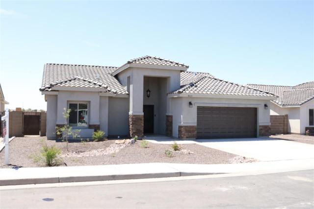 27203 Mesquite, Wellton, AZ 85356 (MLS #138134) :: Group 46:10 Yuma