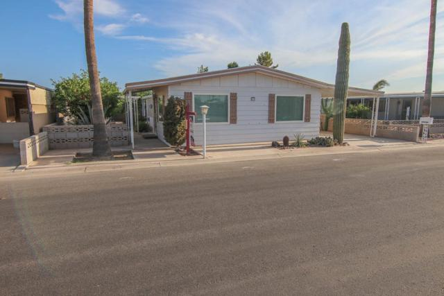 619 Ocotillo, Yuma, AZ 85365 (MLS #135637) :: Group 46:10 Yuma
