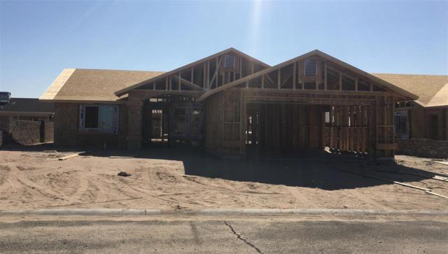 10161 E 34 LN, Yuma, AZ 85365 (MLS #136295) :: Group 46:10 Yuma