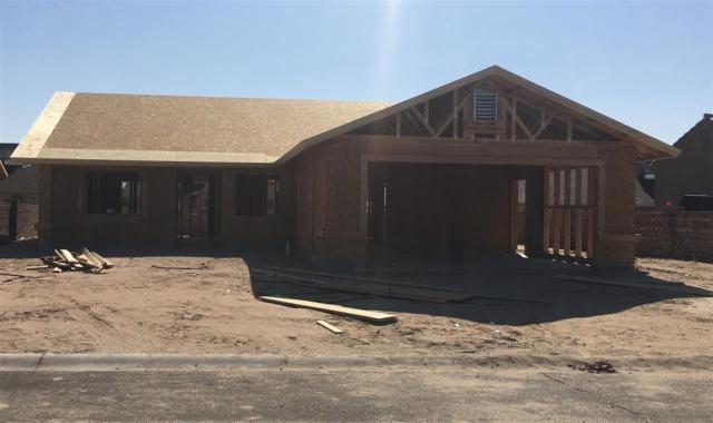 10121 E 34 LN, Yuma, AZ 85365 (MLS #136886) :: Group 46:10 Yuma